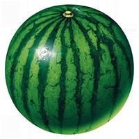 超市水果蔬菜